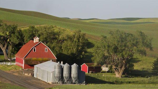 palouse red barn and rolling terrain
